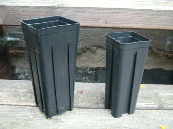 Palmentopf  0,7 Liter