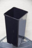 Palmentopf 2,0 Liter